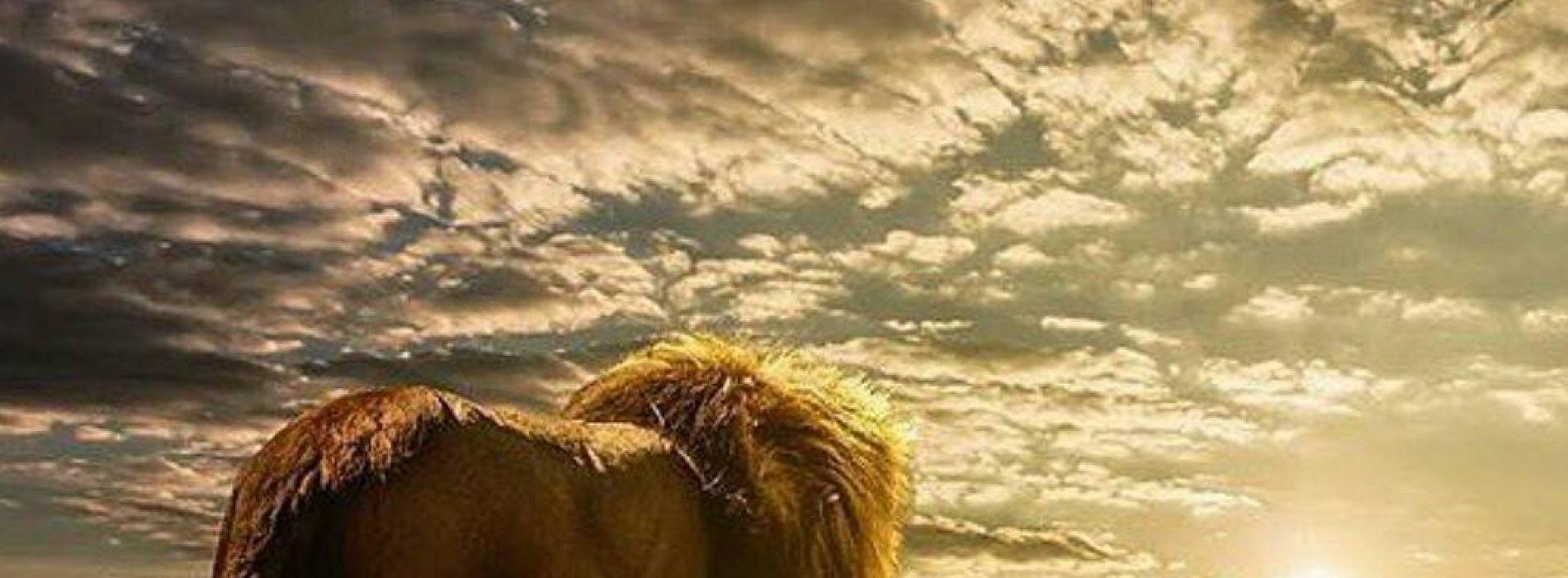 Extrêmement INÉDIT: BLACKO nous dévoile 9 nouveaux titres reggae !! Attention  KT16