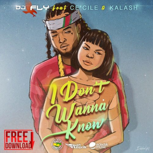 Écoute le titre de DJ FLY- CE'CILE – KALASH – I Don't Wanna Know – Janvier 2018