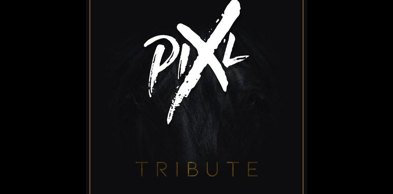 Pix'L – Tribute – Mai 2020