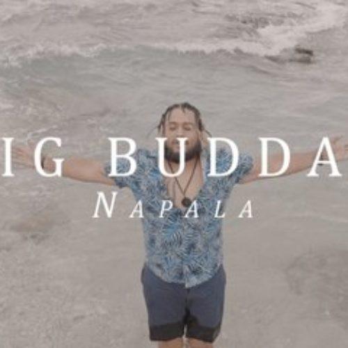 Big Buddah – NaPaLa – Novembre 2020