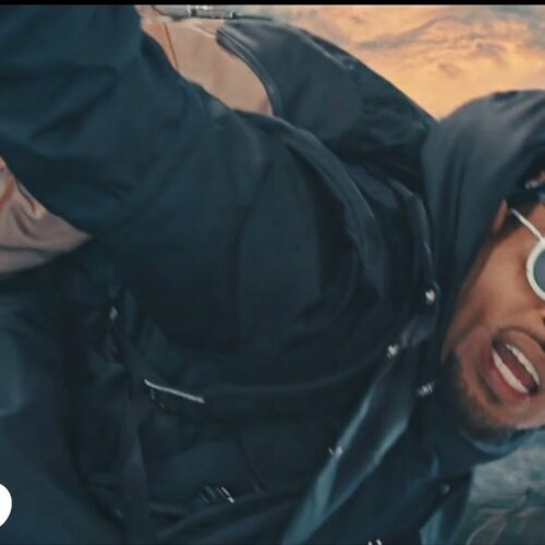 Chris Brown – Go Crazy (Remix) (Official Video) ft. Young Thug, Future, Lil Durk, Mulatto – Avril 2021